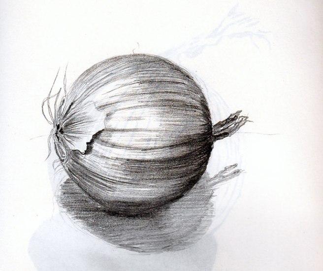 onion-2